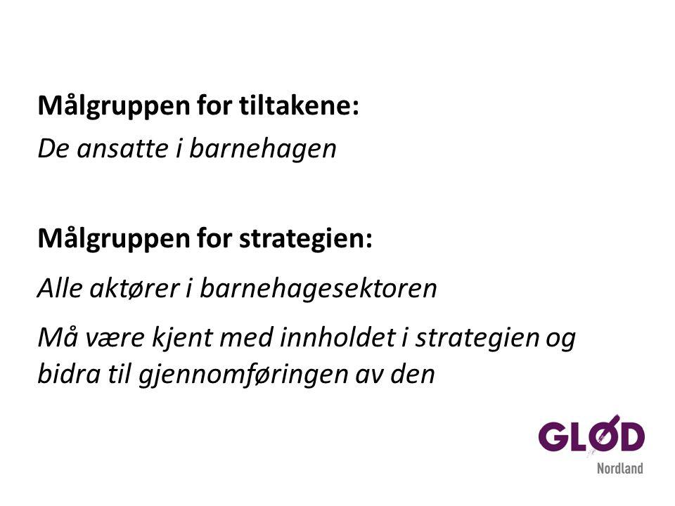 Målgruppen for tiltakene: De ansatte i barnehagen Målgruppen for strategien: Alle aktører i barnehagesektoren Må være kjent med innholdet i strategien