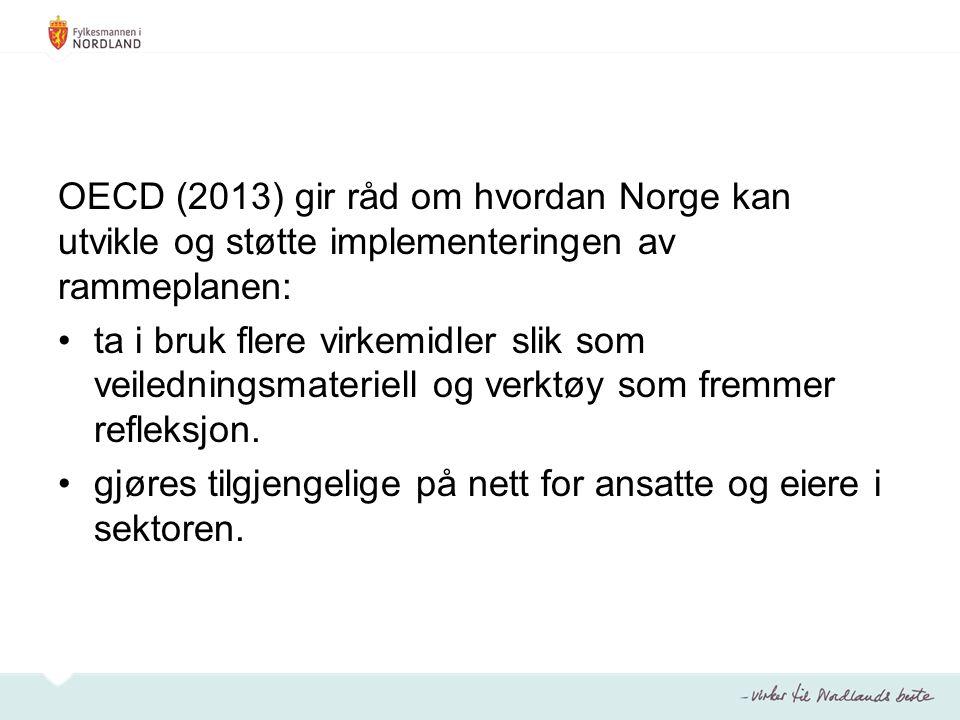 OECD (2013) gir råd om hvordan Norge kan utvikle og støtte implementeringen av rammeplanen: ta i bruk flere virkemidler slik som veiledningsmateriell