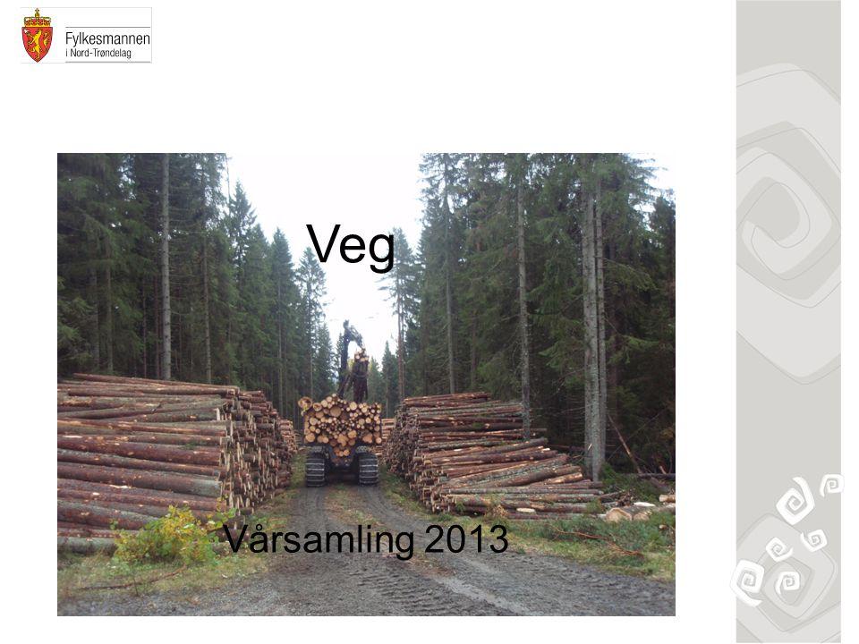 Veg Vårsamling 2013