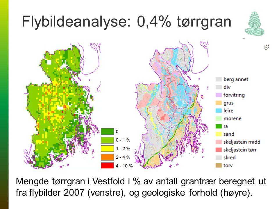 Flybildeanalyse: 0,4% tørrgran Mengde tørrgran i Vestfold i % av antall grantrær beregnet ut fra flybilder 2007 (venstre), og geologiske forhold (høyr