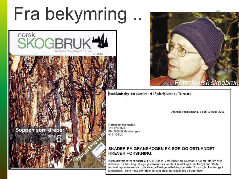 Fra bekymring.. Foto: Norsk skogbruk
