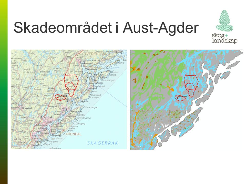 Skadeområdet i Aust-Agder