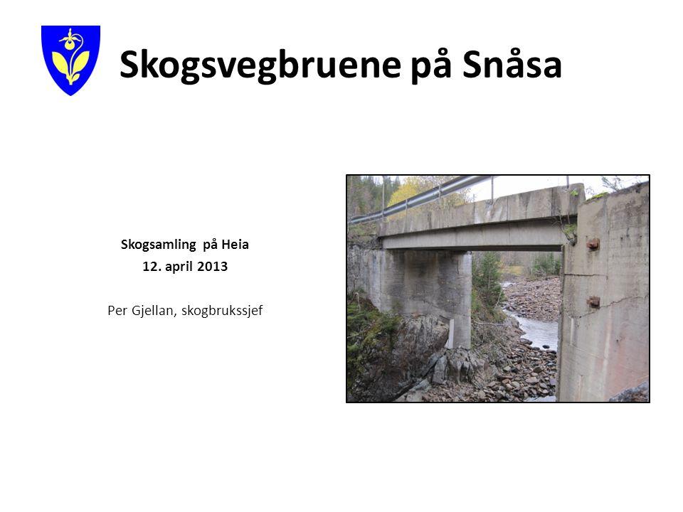 Skogsvegbruene på Snåsa Skogsamling på Heia 12. april 2013 Per Gjellan, skogbrukssjef