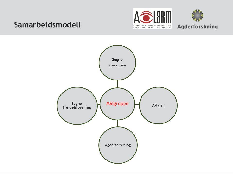 Hvem gjør hva i samarbeidet Organisering mellom partene: Prosjektgruppe, styringsgruppe og referansegruppe.
