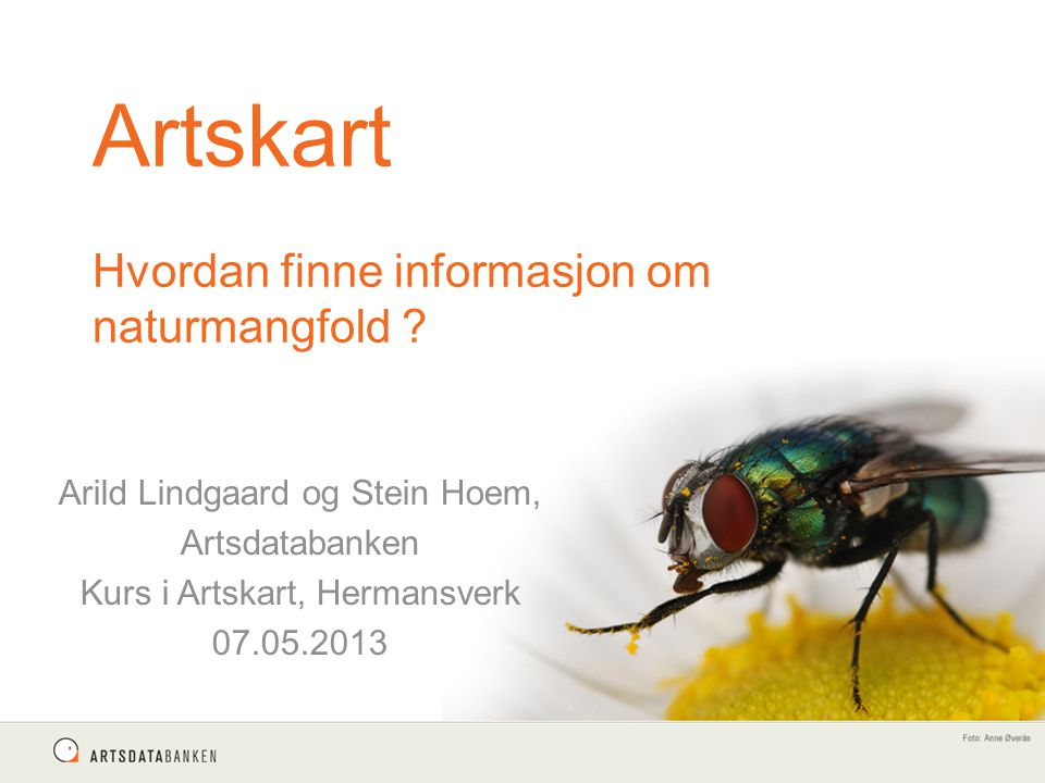 Artskart Hvordan finne informasjon om naturmangfold ? Arild Lindgaard og Stein Hoem, Artsdatabanken Kurs i Artskart, Hermansverk 07.05.2013