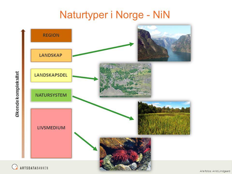 Naturtyper i Norge - NiN Økende kompleksitet REGION LANDSKAP LANDSKAPSDEL NATURSYSTEM LIVSMEDIUM Alle fotos: Arild Lindgaard