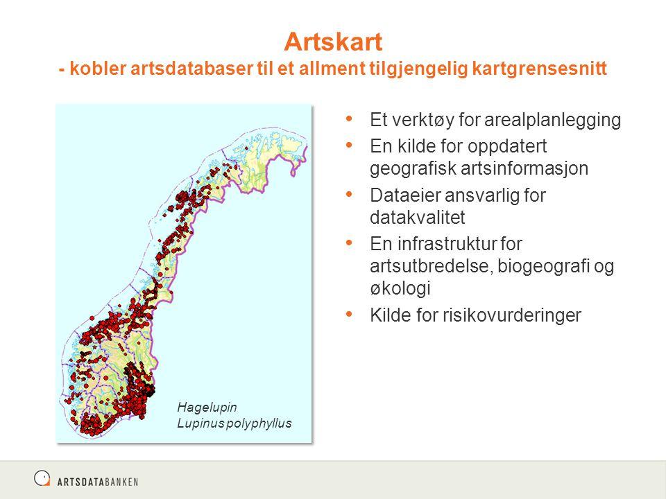 Et verktøy for arealplanlegging En kilde for oppdatert geografisk artsinformasjon Dataeier ansvarlig for datakvalitet En infrastruktur for artsutbredelse, biogeografi og økologi Kilde for risikovurderinger Artskart - kobler artsdatabaser til et allment tilgjengelig kartgrensesnitt Hagelupin Lupinus polyphyllus