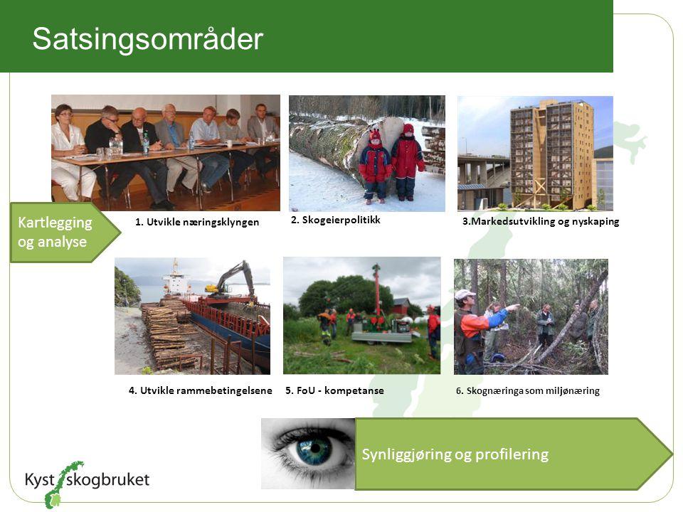 1. Utvikle næringsklyngen 2. Skogeierpolitikk 4. Utvikle rammebetingelsene5. FoU - kompetanse Synliggjøring og profilering 3.Markedsutvikling og nyska