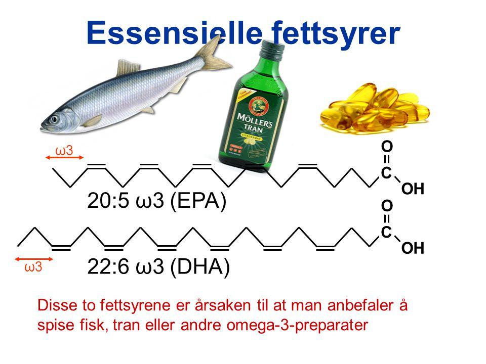 Essensielle fettsyrer C OH O 20:5 ω3 (EPA) ω3ω3 C OH O 22:6 ω3 (DHA) ω3ω3 Disse to fettsyrene er årsaken til at man anbefaler å spise fisk, tran eller andre omega-3-preparater
