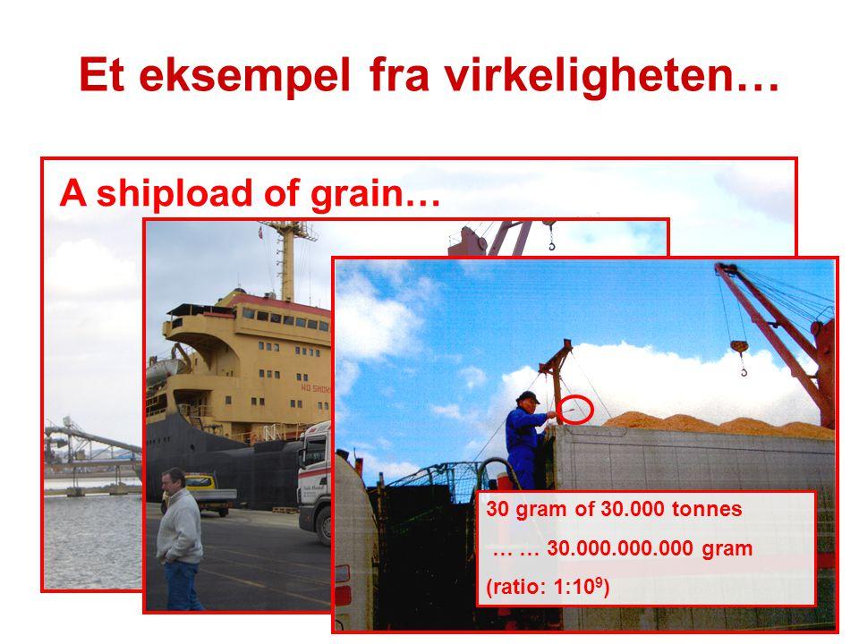 A shipload of grain… 30 gram of 30.000 tonnes … … 30.000.000.000 gram (ratio: 1:10 9 ) Et eksempel fra virkeligheten…