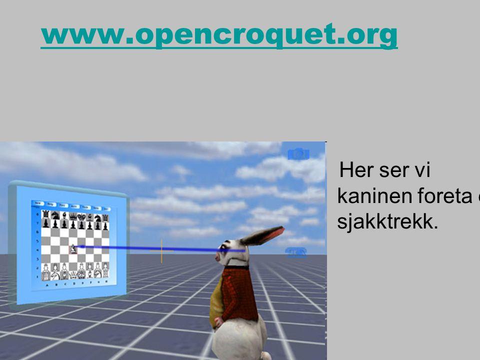 www.opencroquet.org Her ser vi kaninen foreta et sjakktrekk.