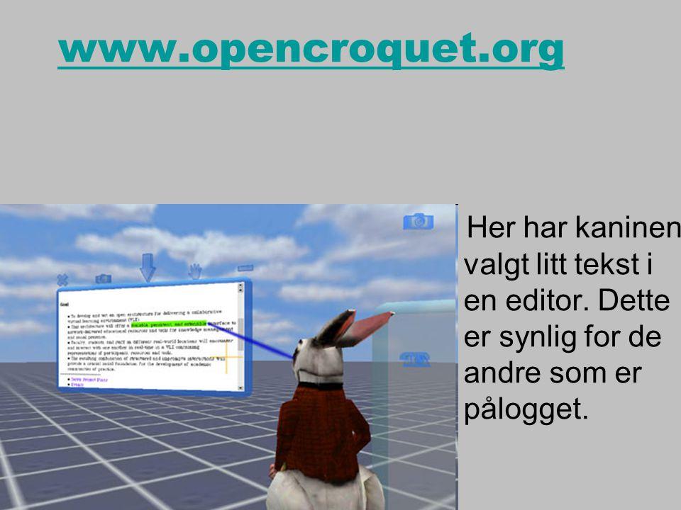 www.opencroquet.org Her har kaninen valgt litt tekst i en editor.