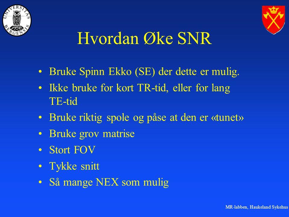 MR-labben, Haukeland Sykehus Hvordan Øke SNR Bruke Spinn Ekko (SE) der dette er mulig.
