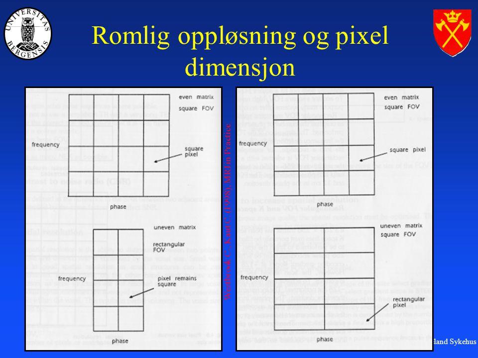 MR-labben, Haukeland Sykehus Romlig oppløsning og pixel dimensjon Westbrook C., Kaut C.