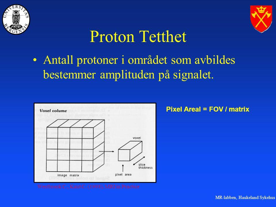 MR-labben, Haukeland Sykehus Proton Tetthet Antall protoner i området som avbildes bestemmer amplituden på signalet.