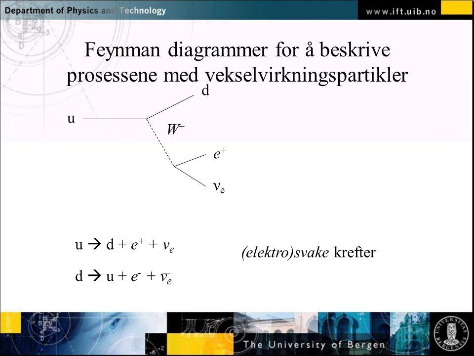 Normal text - click to edit Feynman diagrammer for å beskrive prosessene med vekselvirkningspartikler u d e+e+ νeνe W+W+ u  d + e + + ν e d  u + e - + ν e (elektro)svake krefter