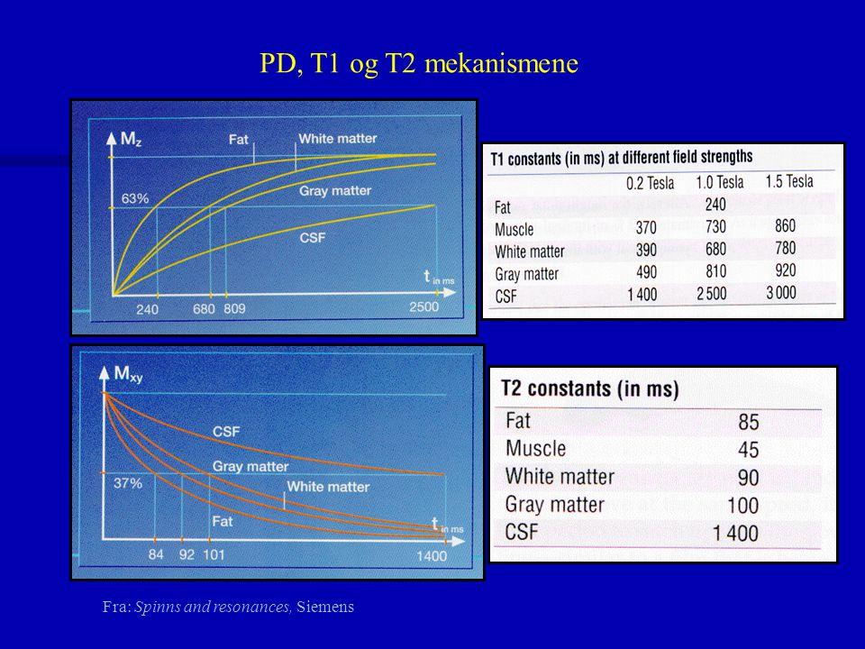PD, T1 og T2 mekanismene Fra: Spinns and resonances, Siemens