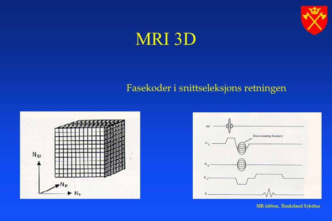 MR-labben, Haukeland Sykehus Fasekoder i snittseleksjons retningen MRI 3D