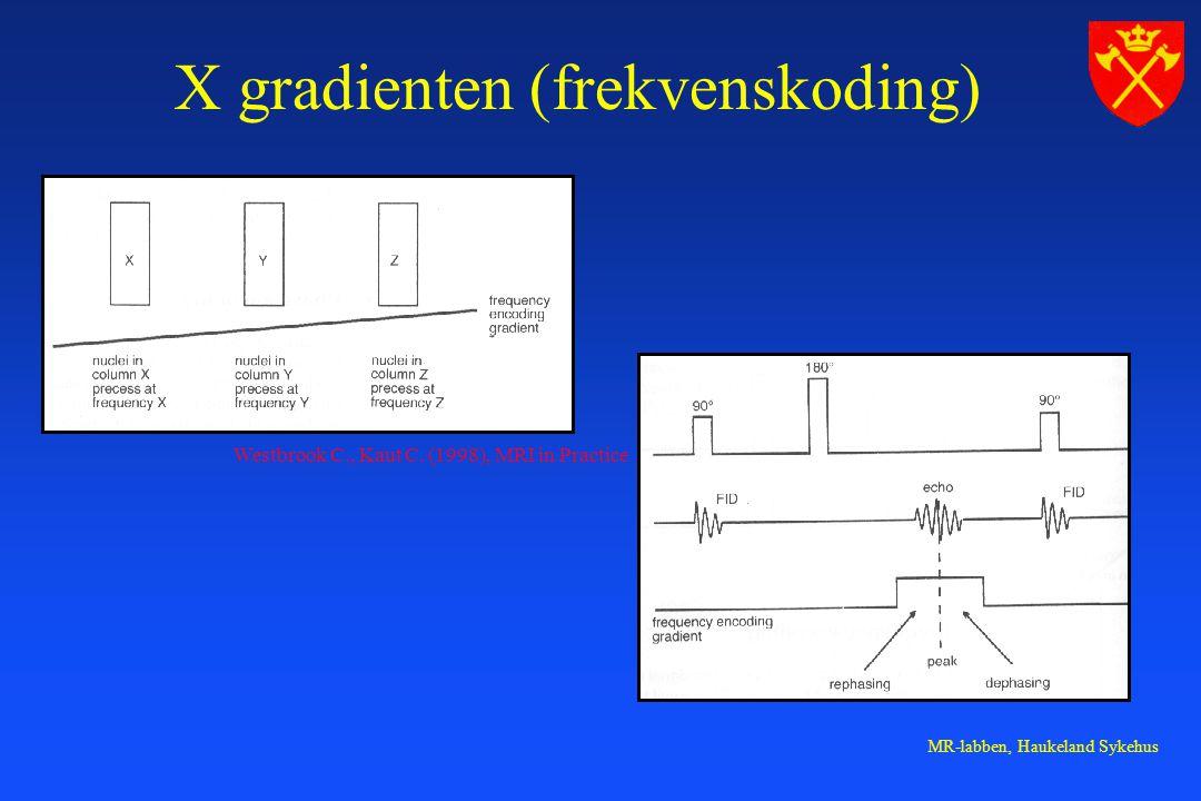 MR-labben, Haukeland Sykehus X gradienten (frekvenskoding) Westbrook C., Kaut C.