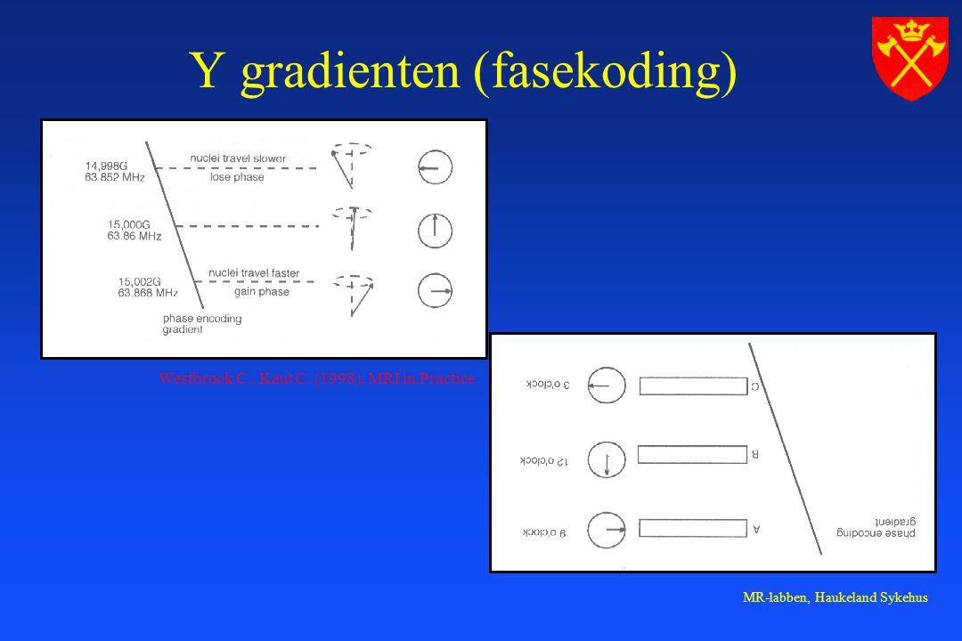 MR-labben, Haukeland Sykehus Y gradienten (fasekoding) Westbrook C., Kaut C.