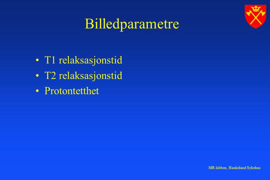 MR-labben, Haukeland Sykehus Billedparametre T1 relaksasjonstid T2 relaksasjonstid Protontetthet