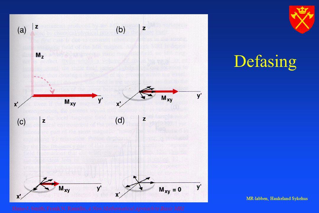 MR-labben, Haukeland Sykehus Defasing Hans-J. Smith, Frank N. Ranallo, A Non Mathematical Aproach to Basic MRI