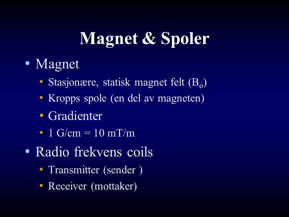 Magnet & Spoler Magnet Stasjonære, statisk magnet felt (B o ) Kropps spole (en del av magneten) Gradienter 1 G/cm = 10 mT/m Radio frekvens coils Trans
