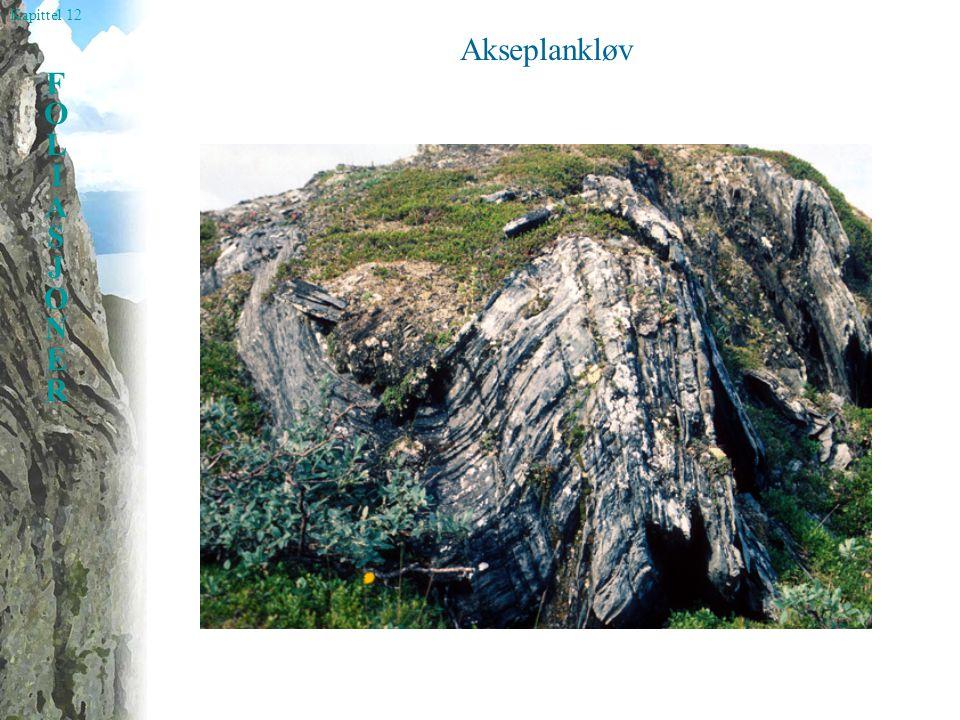 Kapittel 12 FOLIASJONERFOLIASJONER Akseplankløv