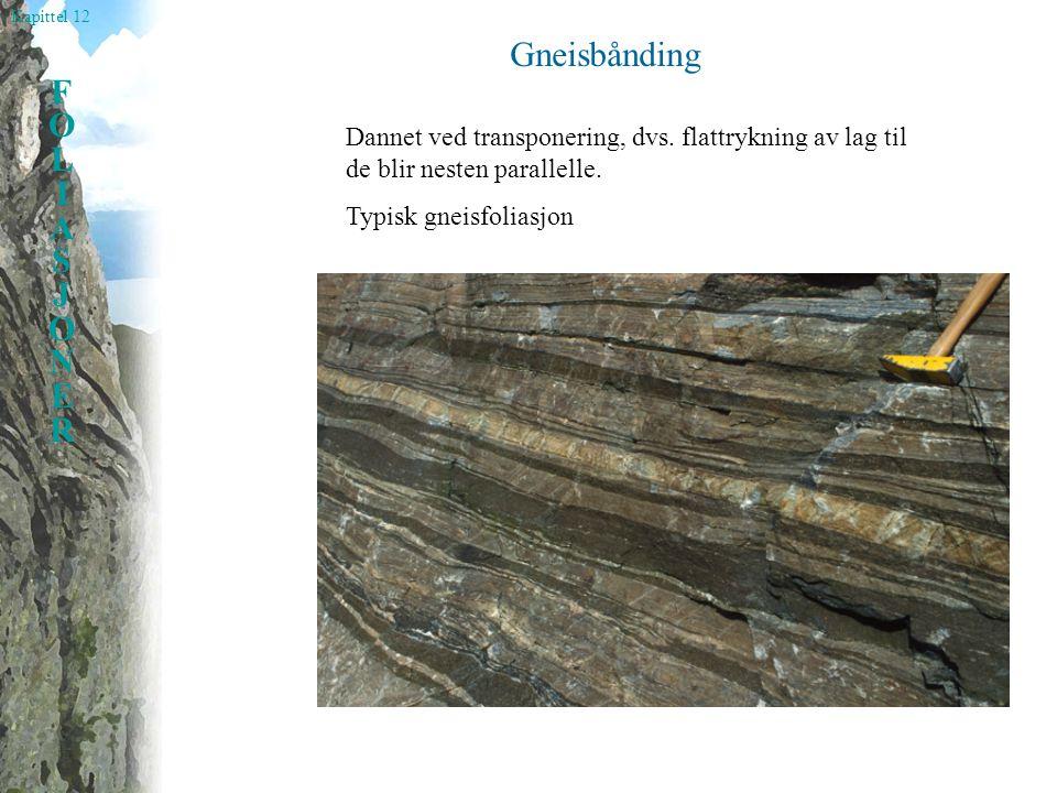 Kapittel 12 FOLIASJONERFOLIASJONER Gneisbånding Dannet ved transponering, dvs. flattrykning av lag til de blir nesten parallelle. Typisk gneisfoliasjo