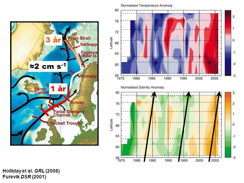 Helge Drange Geophysical Institute University of Bergen Holliday et al. GRL (2008) Furevik DSR (2001) 1 år 3 år ≈2 cm s -1