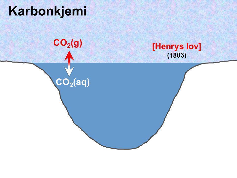 CO 2 (aq) + H 2 O  H 2 CO 3 CO 2 (g)  H + + HCO 3 −   H + + CO 3 2−  Havet inneholder rundt 50 ganger mer uorganisk karbon enn atmosfærens totale CO 2 -mengde