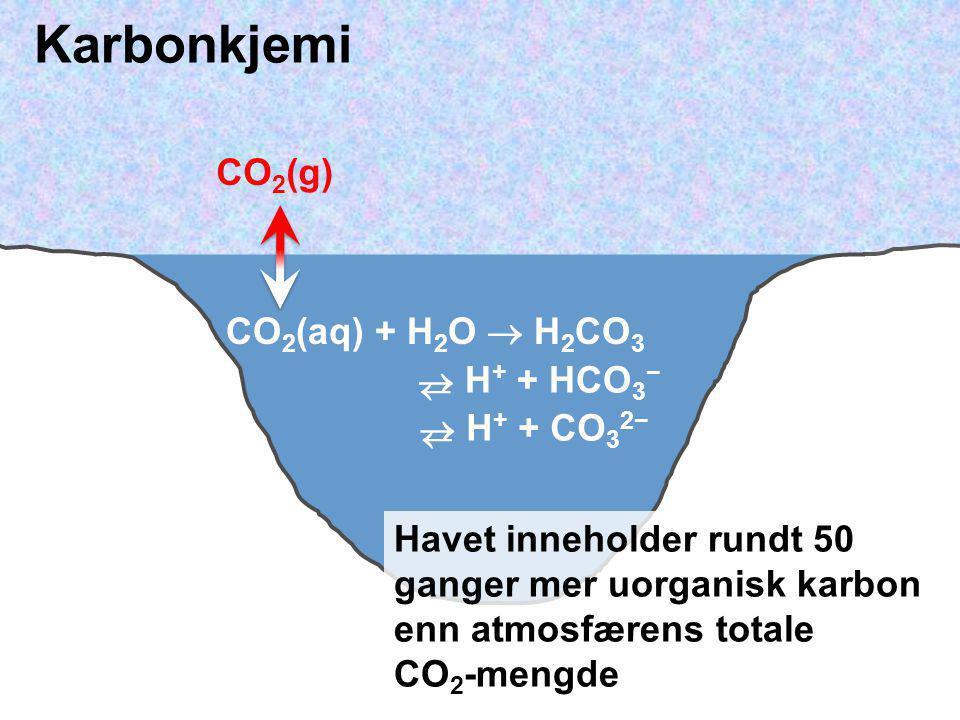CO 2 (aq) + H 2 O  H 2 CO 3 CO 2 (g)  H + + HCO 3 −   H + + CO 3 2−  Havet inneholder rundt 50 ganger mer uorganisk karbon enn atmosfærens totale