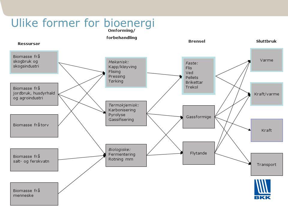441 Ulike former for bioenergi Biomasse frå skogbruk og skogsindustri Biomasse frå jordbruk, husdyrhald og agroindustri Biomasse frå torv Biomasse frå