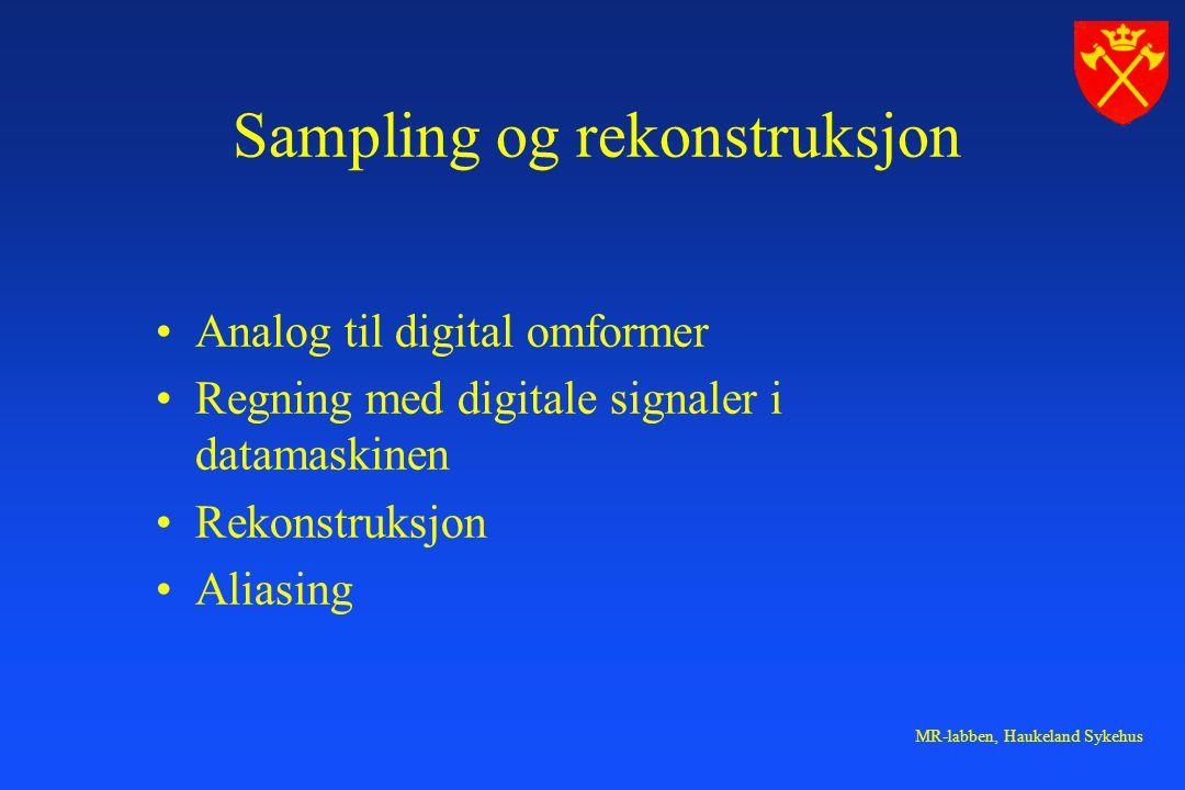 MR-labben, Haukeland Sykehus Sampling og rekonstruksjon Analog til digital omformer Regning med digitale signaler i datamaskinen Rekonstruksjon Aliasing