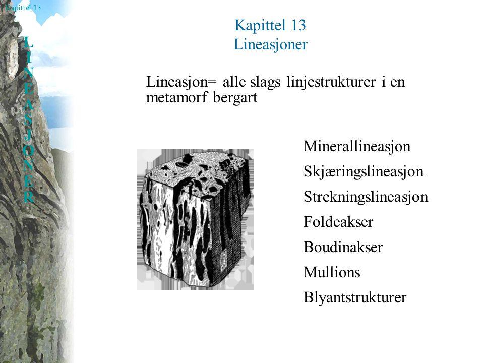 Kapittel 13 LINEASJONERLINEASJONER Minerallineasjon Beskriver konfigurasjonen av de forskjellige elementene som bygger opp en deformert bergart.