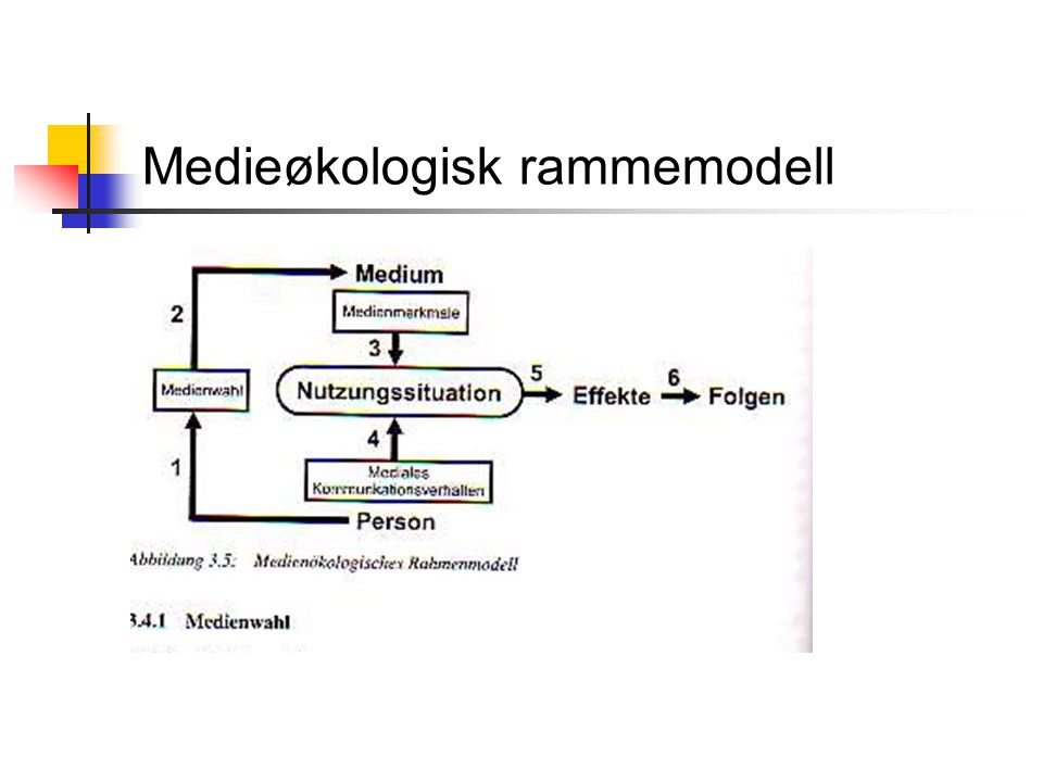 Medieøkologisk rammemodell