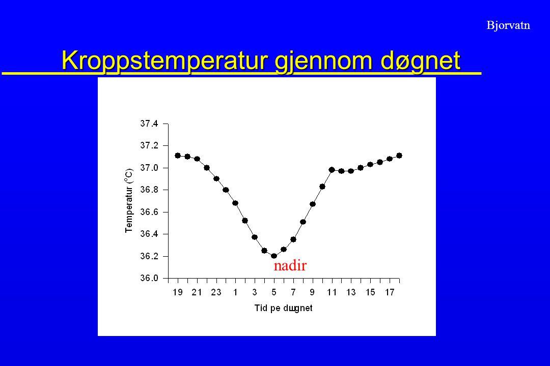 Bjorvatn Kroppstemperatur gjennom døgnet nadir
