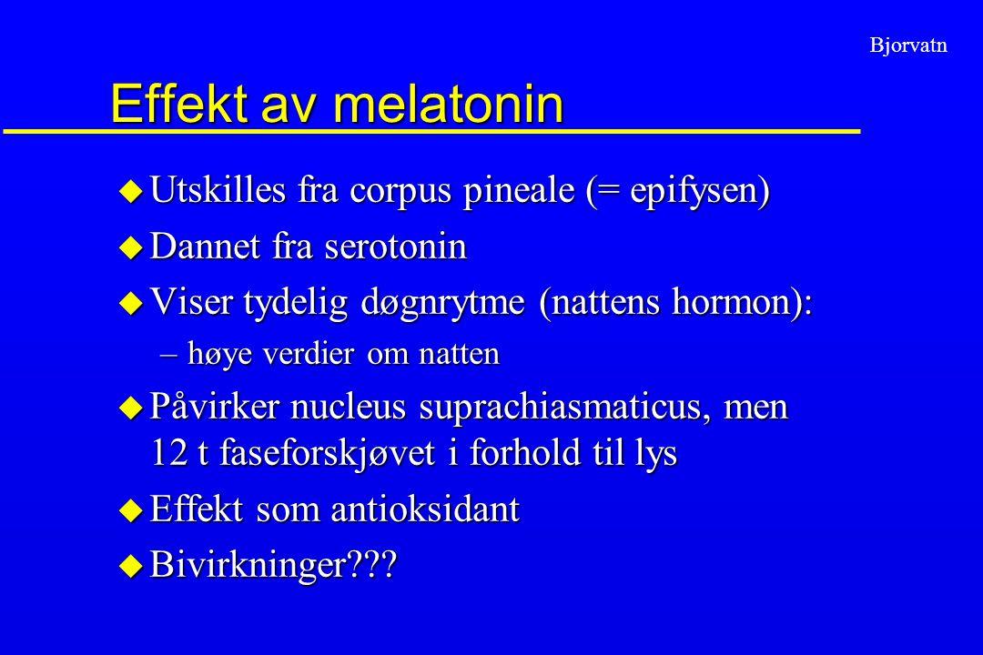 Bjorvatn Effekt av melatonin u Utskilles fra corpus pineale (= epifysen) u Dannet fra serotonin u Viser tydelig døgnrytme (nattens hormon): –høye verd