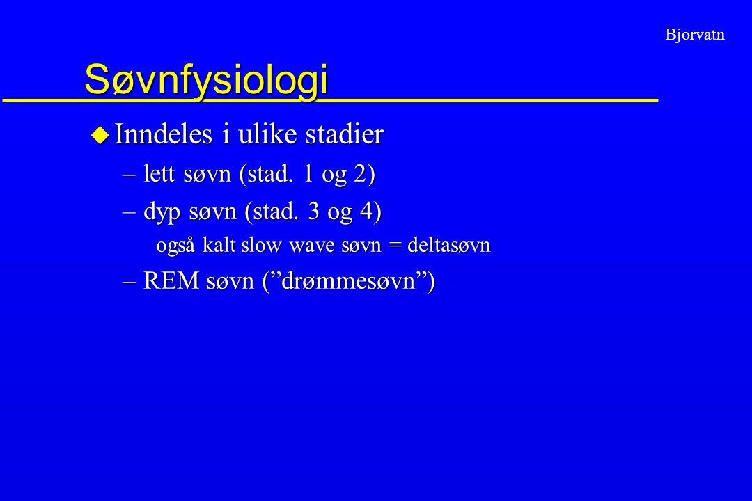 """Bjorvatn Søvnfysiologi u Inndeles i ulike stadier –lett søvn (stad. 1 og 2) –dyp søvn (stad. 3 og 4) også kalt slow wave søvn = deltasøvn –REM søvn ("""""""