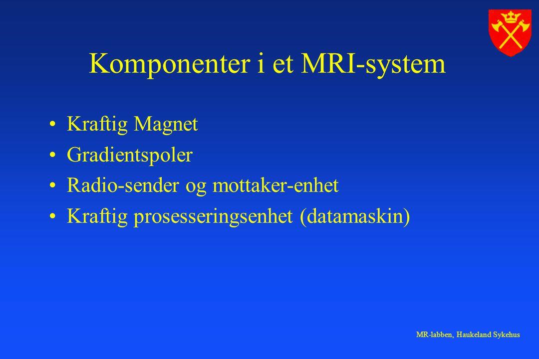 MR-labben, Haukeland Sykehus Komponenter i et MRI-system Kraftig Magnet Gradientspoler Radio-sender og mottaker-enhet Kraftig prosesseringsenhet (data