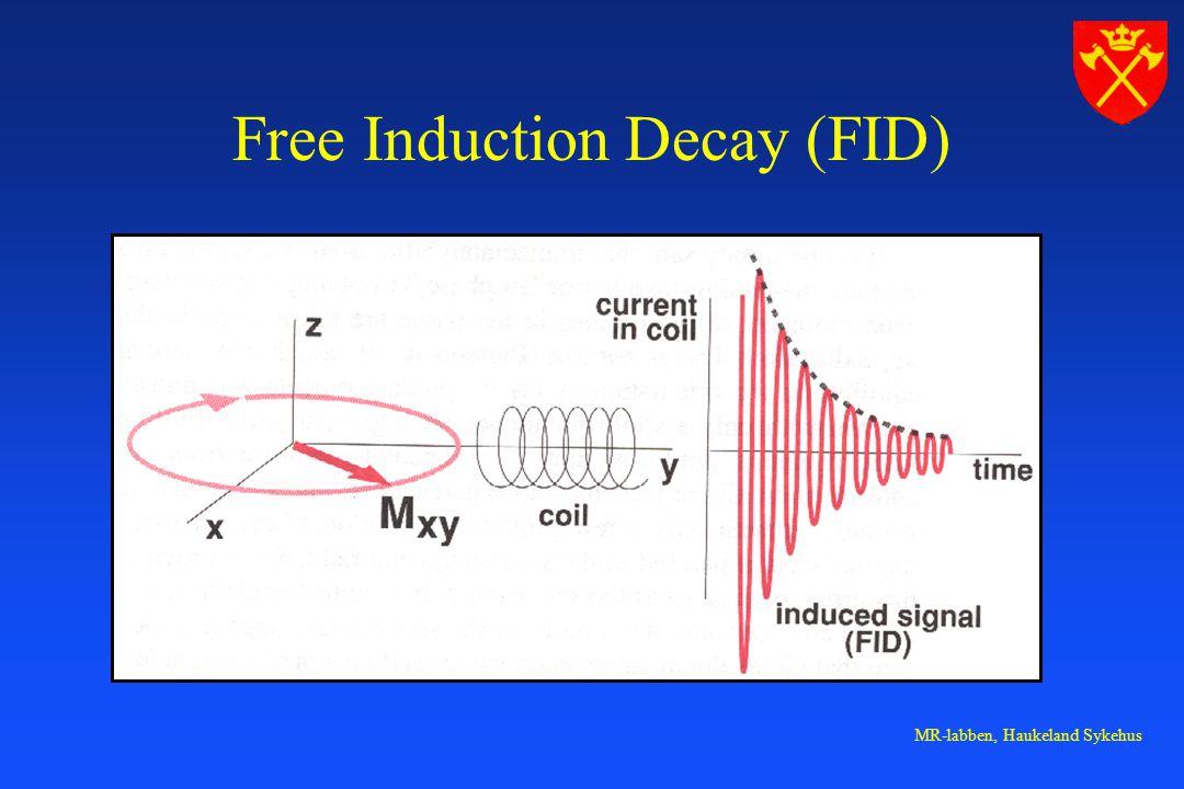 MR-labben, Haukeland Sykehus Free Induction Decay (FID)
