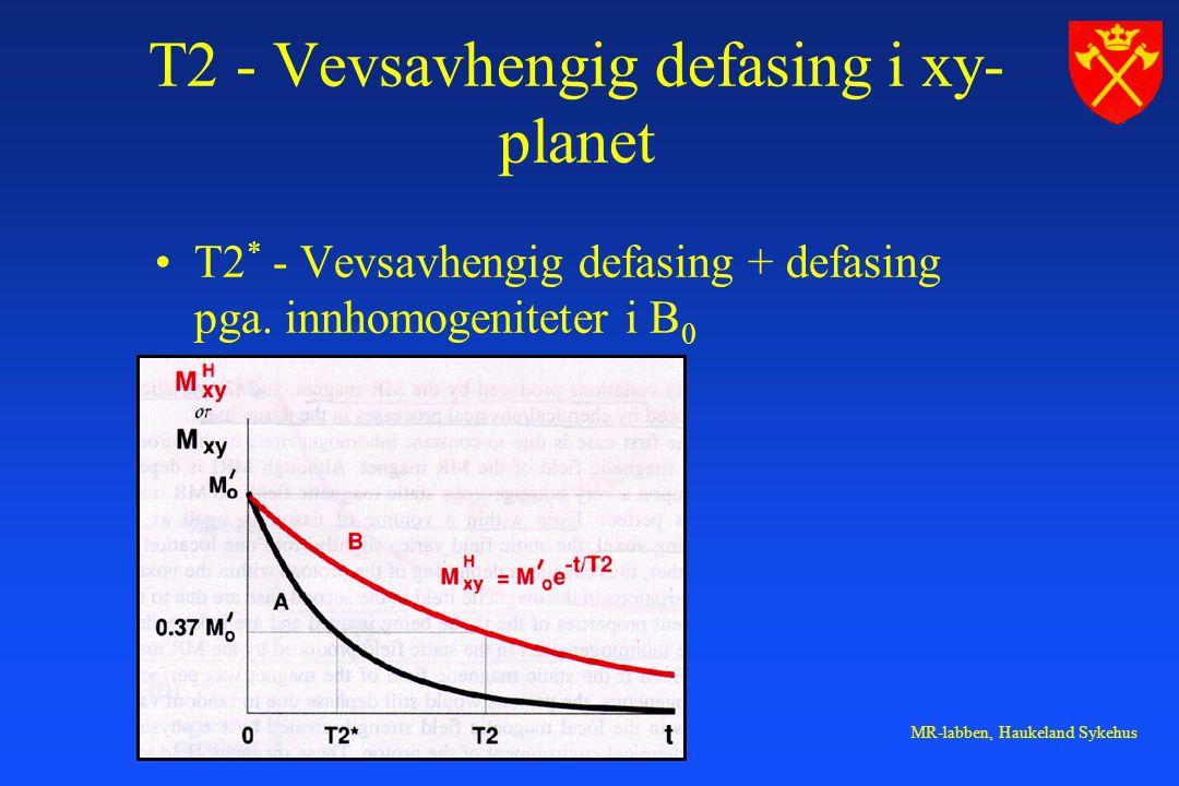 MR-labben, Haukeland Sykehus T2 - Vevsavhengig defasing i xy- planet T2 * - Vevsavhengig defasing + defasing pga. innhomogeniteter i B 0