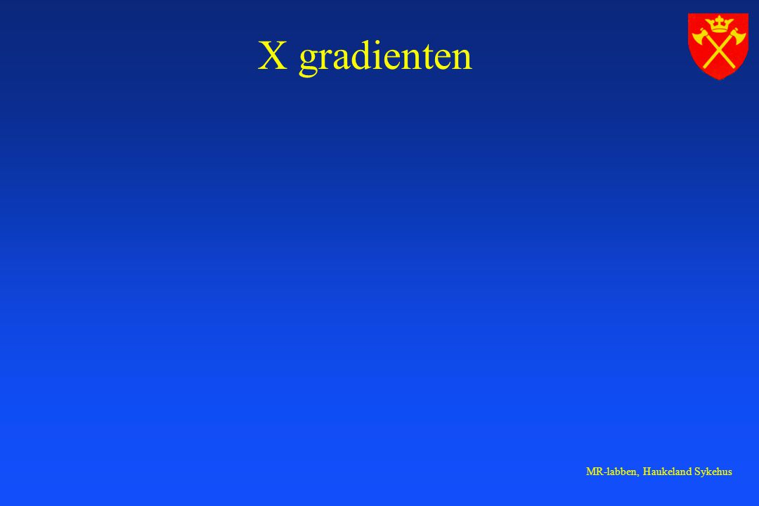 MR-labben, Haukeland Sykehus X gradienten