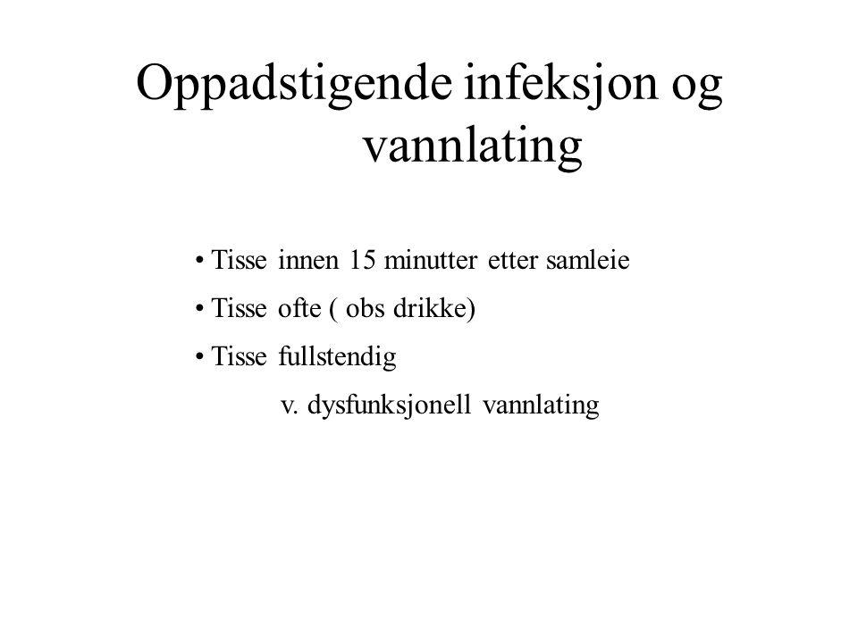 Oppadstigende infeksjon og vannlating Tisse innen 15 minutter etter samleie Tisse ofte ( obs drikke) Tisse fullstendig v.