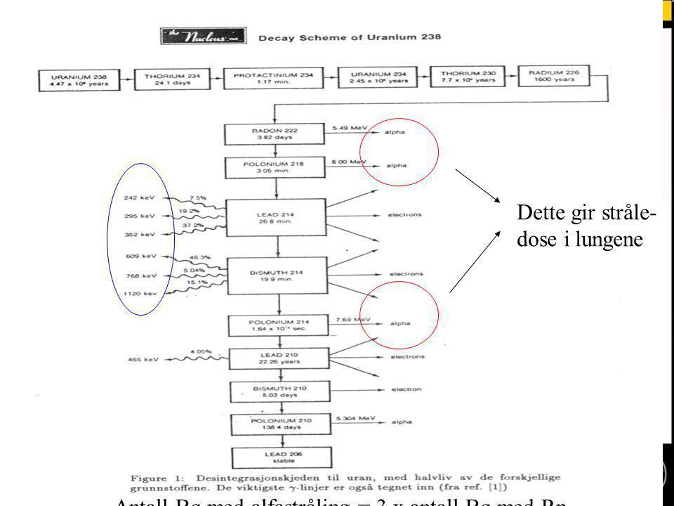 Normal text - click to edit Antall Bq med alfastråling = 3 x antall Bq med Rn Dette gir stråle- dose i lungene