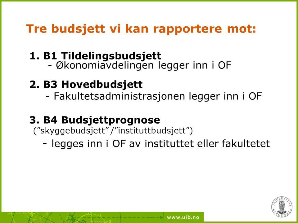 Tre budsjett vi kan rapportere mot: 1. B1 Tildelingsbudsjett - Økonomiavdelingen legger inn i OF 2. B3 Hovedbudsjett - Fakultetsadministrasjonen legge