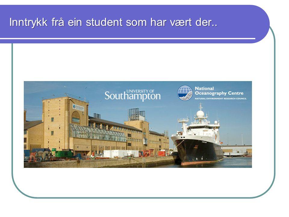 Studiemiljø Godt miljø – lett å komme inn i miljøet selv om du kommer utenfra Svært dyktige forelesere Erasmusorganisasjonen er veldig aktiv.