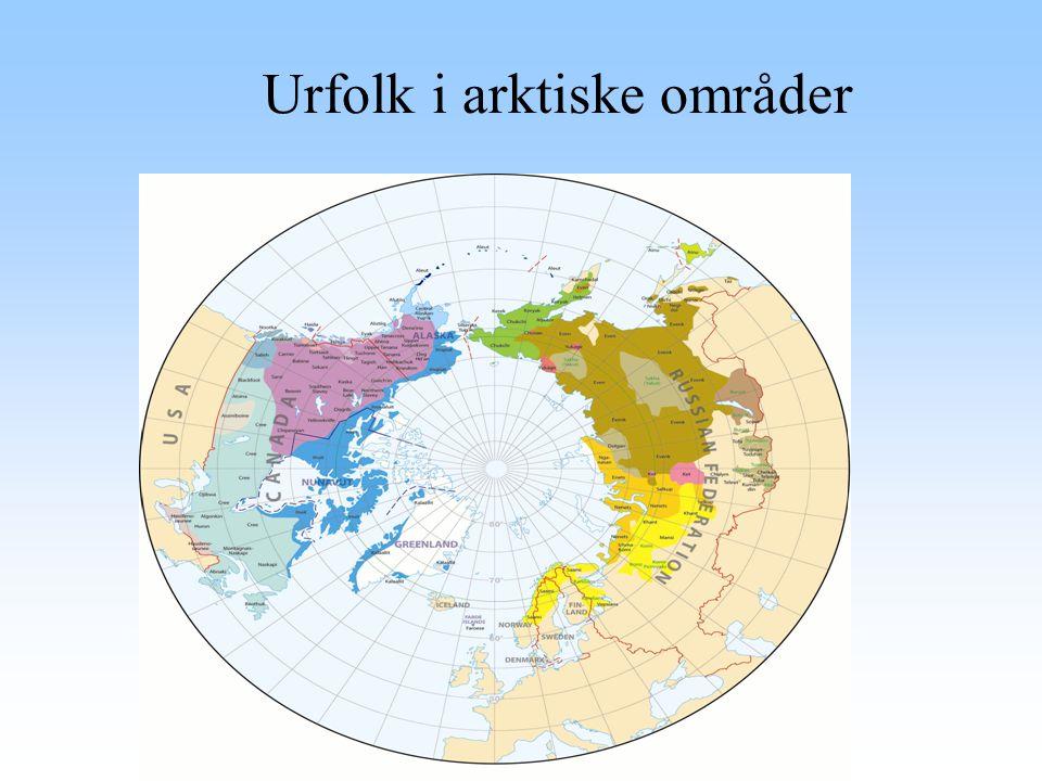 Urfolk i arktiske områder