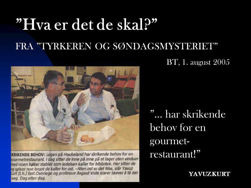 """""""… har skrikende behov for en gourmet- restaurant!"""" YAVUZ KURT """"Hva er det de skal?"""" FRA """"TYRKEREN OG SØNDAGSMYSTERIET"""" BT, 1. august 2005"""