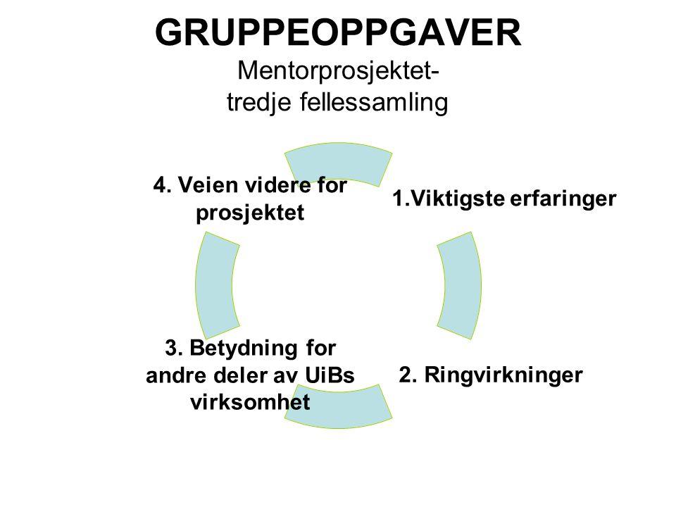 GRUPPEOPPGAVER Mentorprosjektet- tredje fellessamling 1.Viktigste erfaringer 2.